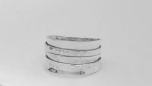 Vier zilveren ringen in 1